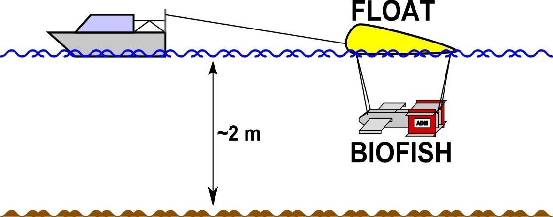 Skizze zur Umsetzung der Implementierung des BIOFISH für flache Wasserkörper am Beispiel der Elbe. Das Gerät ist auch für die dreidimensionale Untersuchung von tiefen Gewässern ausgelegt