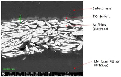 Rasterelektronenmikroskopische Aufnahme des Schnitts durch eine Ag-haltige und mit Titandioxid beschichtete Elektrode auf einer Membranoberfläche