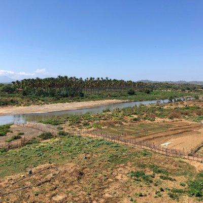Zu sehen ist ein Foto der Flusslandschaft des Catamayo-Chira an der Grenze von Ecuador und Peru mit vereinzelt abgegrenzten Anbauflächen, Brachland und Palmenplantagen.