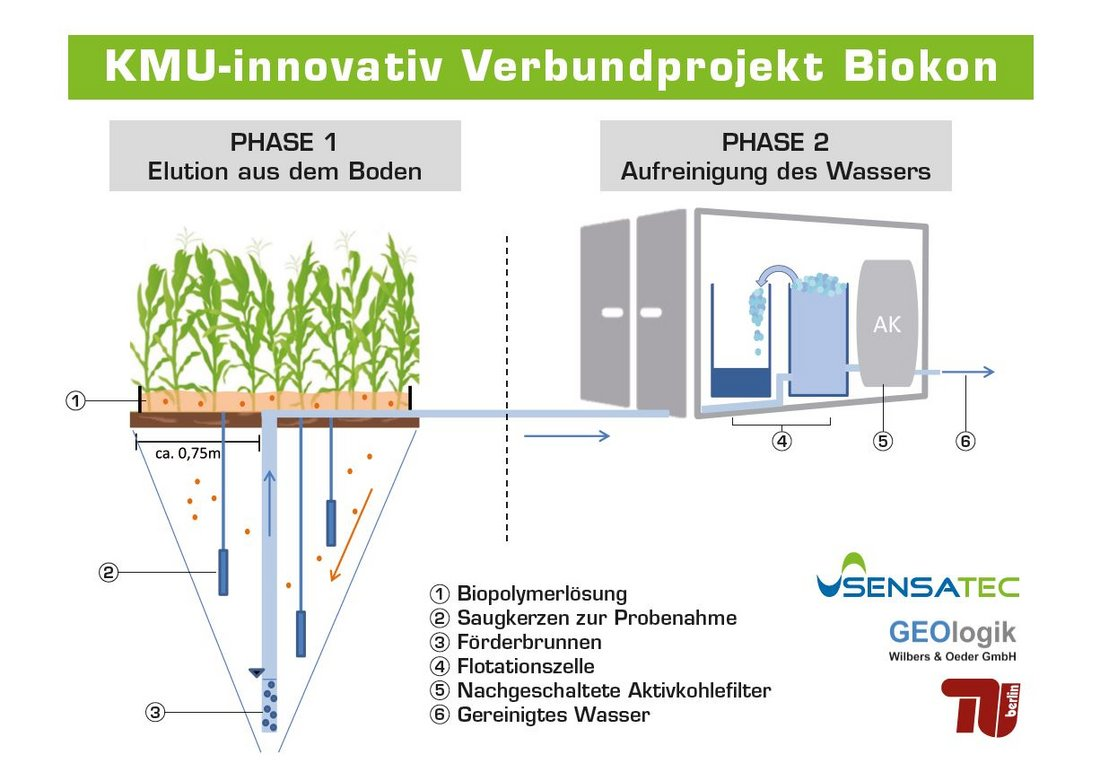 Auf dem Bild ist das Verfahrensschema der entwickelten Technologie in zwei Phasen dargestellt. In Phase 1 wird Biopolymerlösung auf eine landwirtschaftliche Fläche aufgebracht und versickert bis zum Grundwasser. Die Schadstoffe werden von den Biopolymeren aus dem Boden bis ins Grundwasser transportiert. In Phase 2 wird das Grundwasser in eine Sanierungsanlage gefördert. In der Sanierungsanlage werden die Schadstoffe mittels einer Flotationsanlage vom Wasser getrennt. Das verbleibende Wasser wird über einen Aktivkohlefilter geleitet und ist somit gereinigt.