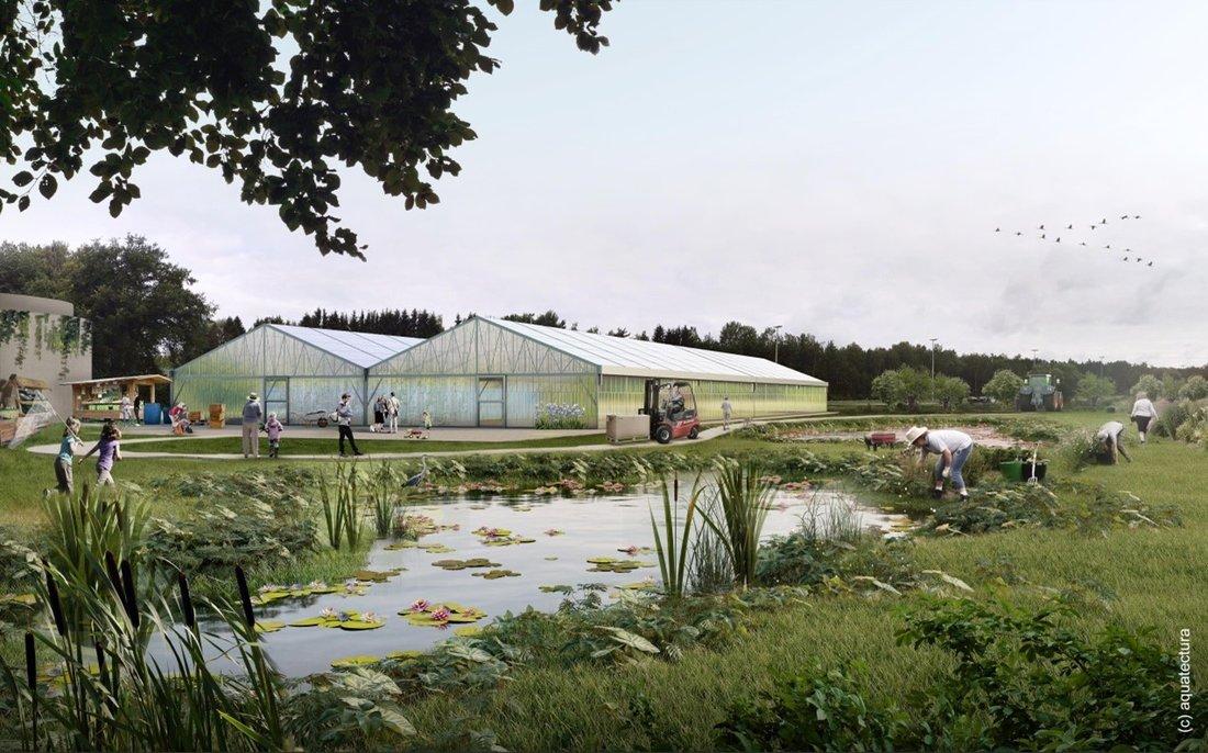Zwei Foliengewächshäuser sind umgeben mit Grünflächen und bepflanzten Schönungsteichen; Menschen die den Hofladen besuchen oder dort arbeiten sind zu sehen.