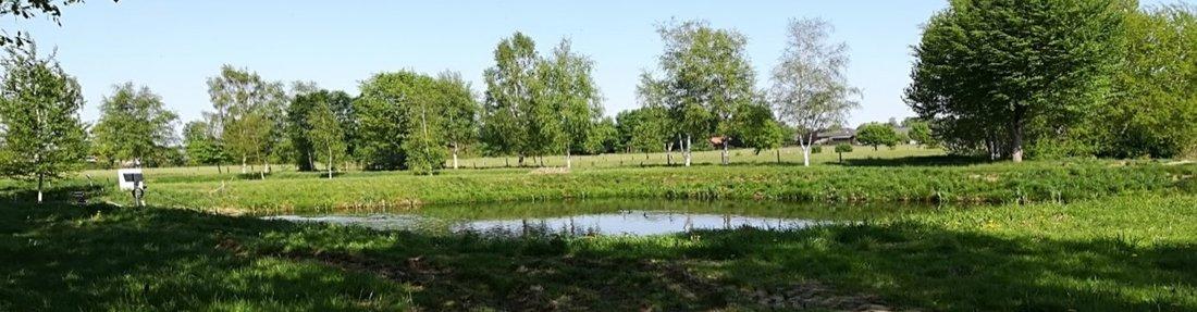 Das Bild zeigt die Klärteichanlage in Weißenberge